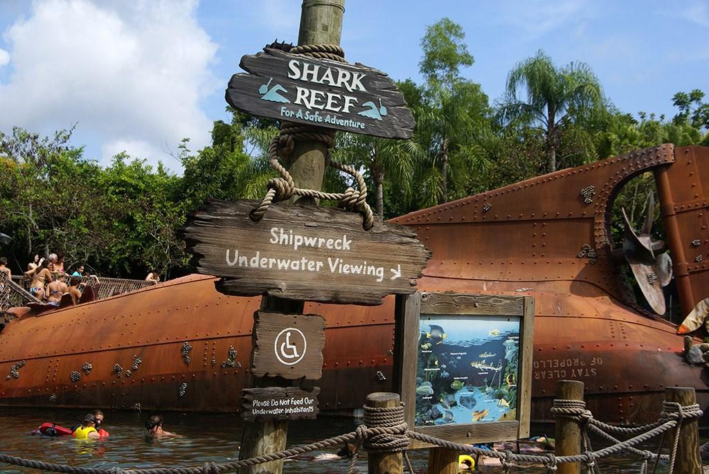 Shark Reef underwater viewing area