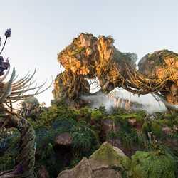 The Pandora landscape