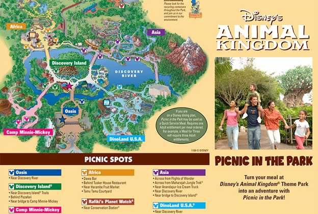 Animal Kingdom Picnic in the Park guide