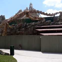 T-Rex restaurant construction