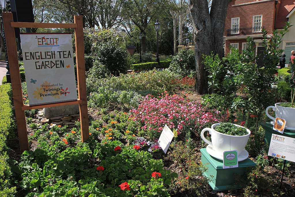 Twinings at Epcot's Flower and Garden Festival