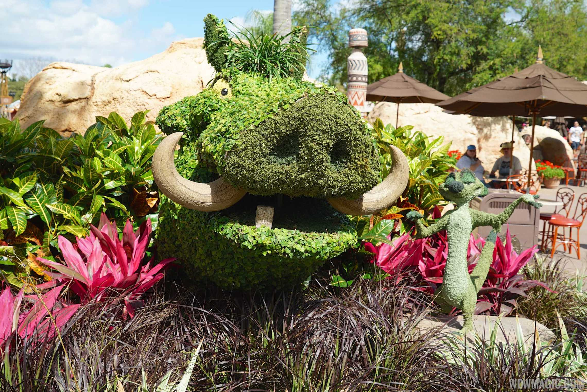 2015 Epcot International Flower And Garden Festival Opening Day Tour Photo 71 Of 74