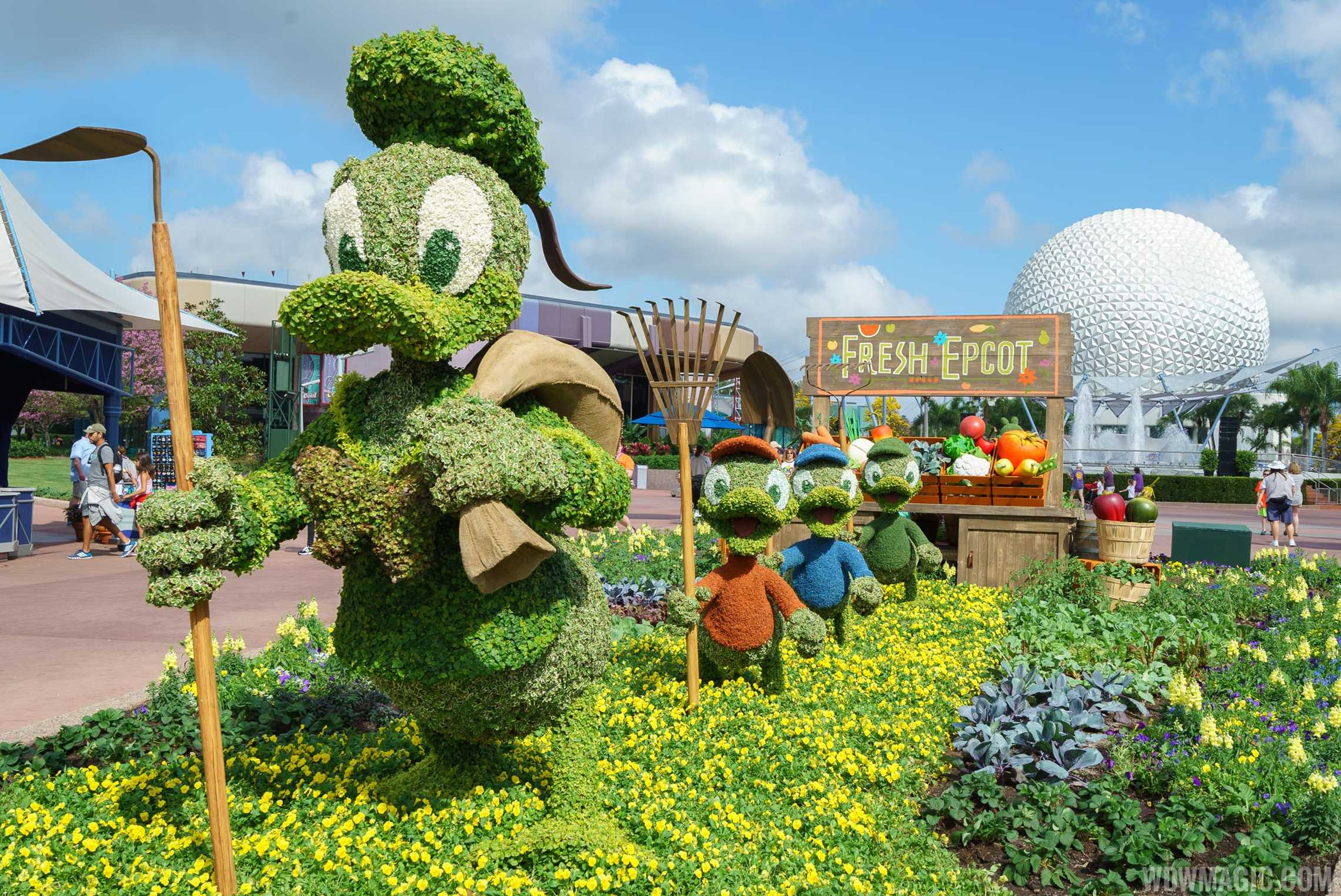2017 Flower and Garden Festival - Donald Duck, Huey, Dewy and Louie topiaries