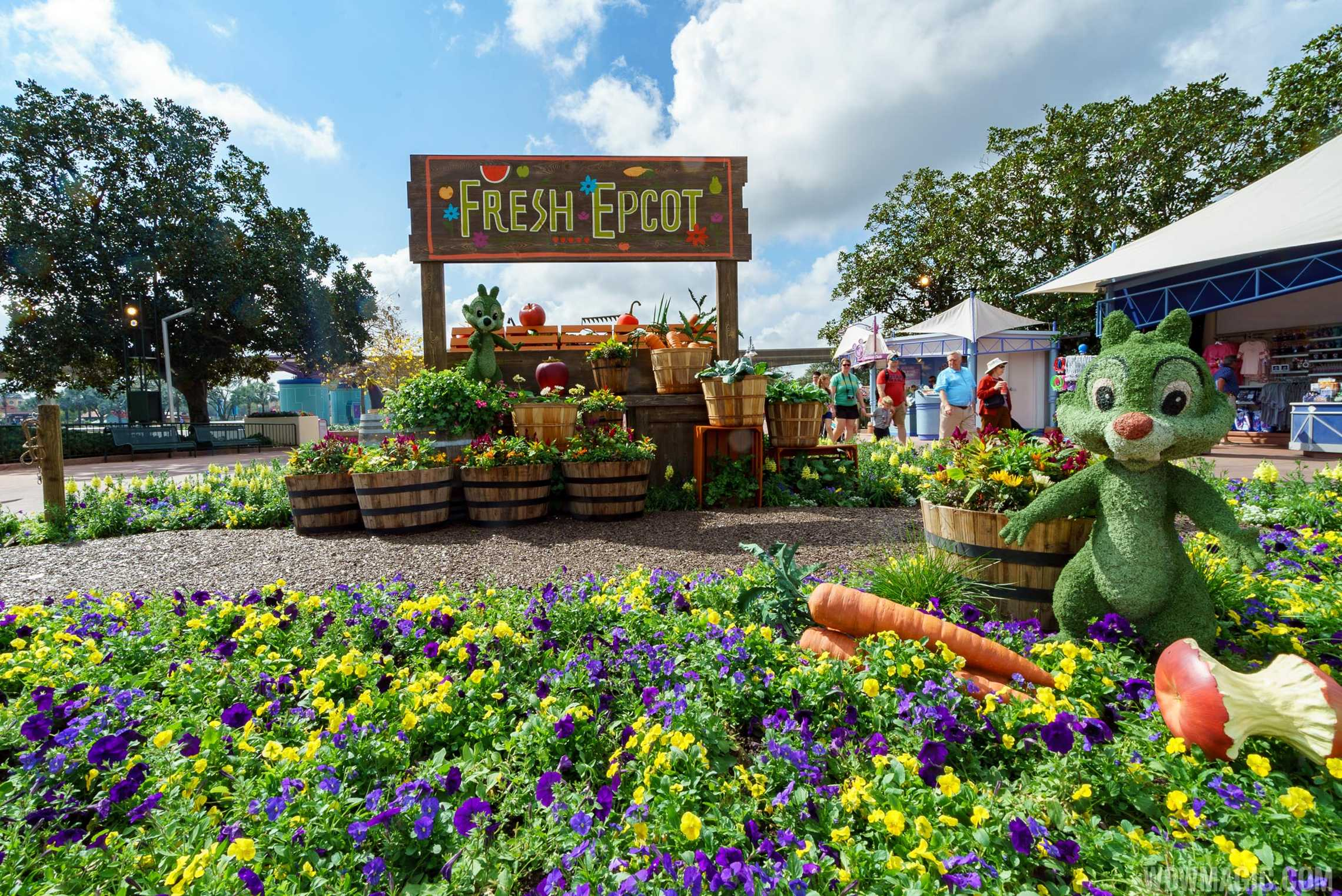 2017 Epcot International Flower And Garden Festival Topiary Tour Photo 13 Of 58