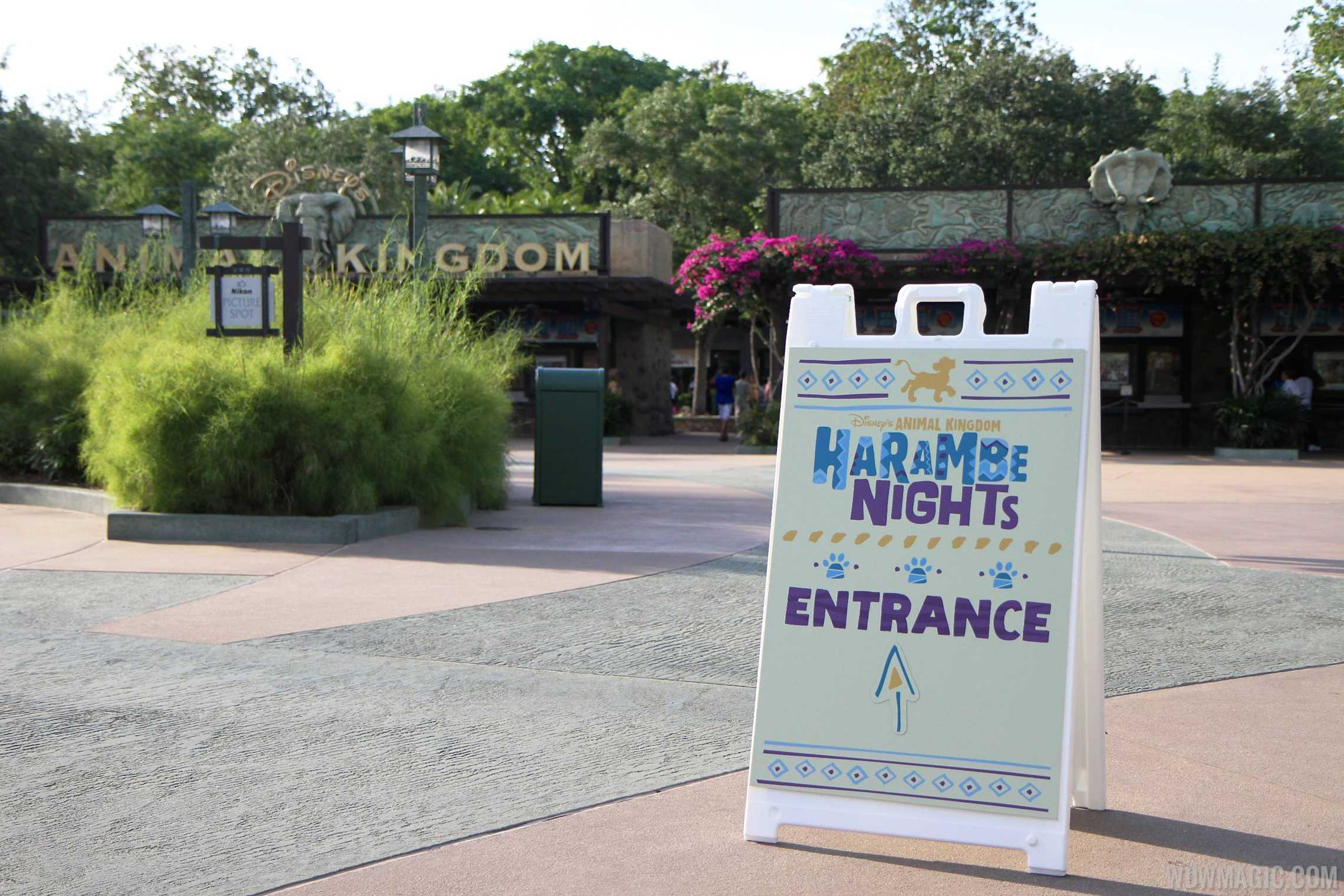 Harambe Nights - Main entrance signage