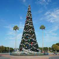 Holidays at Disney's Hollywood Studios