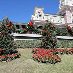 Holidays decorations at the Magic Kingdom 2011