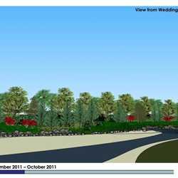 Grand Floridian Villas contruction visual impact rendering