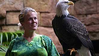 Flights of Wonder bird shows expand to other areas of Disney's Animal Kingdom